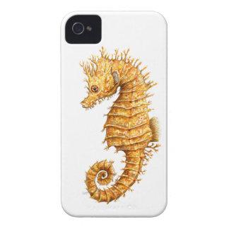 Sea horse Hippocampus hippocampus iPhone 4 Case-Mate Cases