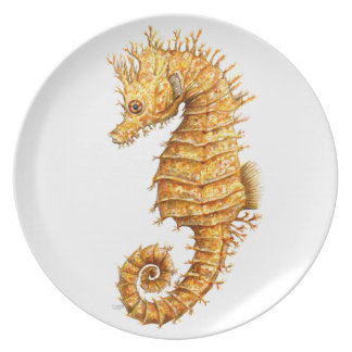 Sea horse Hippocampus hippocampus Plate