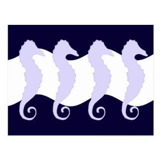 Sea Horses 3 Postcard
