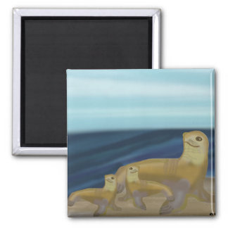 Sea Lion Habitat Square Magnet