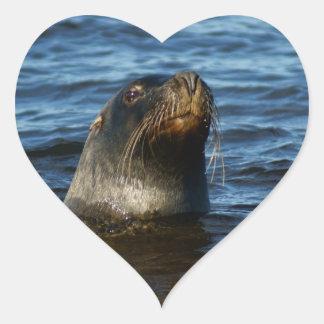 Sea Lion Heart Sticker