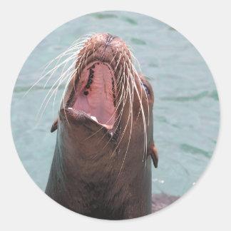 Sea Lion Mouth Open Sticker