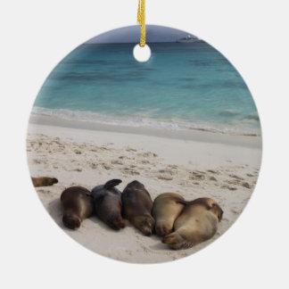 Sea Lion Ornament