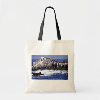 Sea Lion Point - Pt. Lobos State Reserve Budget Tote Bag