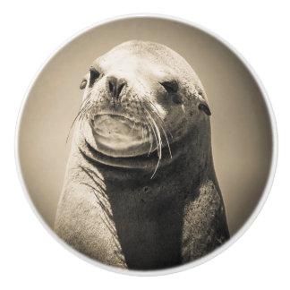 Sea lion portrait ceramic knob