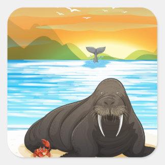 Sea lion square sticker