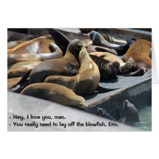 Sea Lion Wisdom Blowfish Card