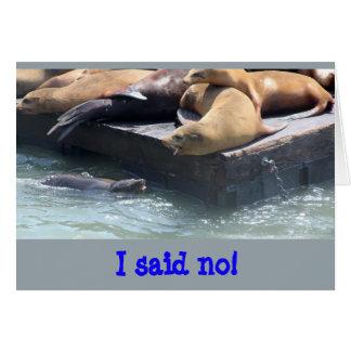 Sea Lion Wisdom no Card