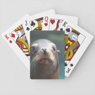 Sea Lion with Whiskers Poker Deck