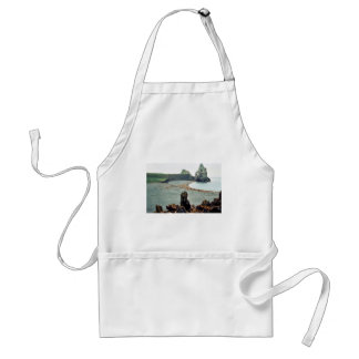 Sea Lions at Haulout Aprons