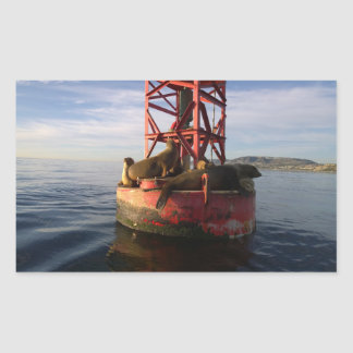 Sea Lions Relaxing on a Buoy in Dana Point Rectangular Sticker