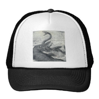Sea Monster Vs. Sea Serpent Hats