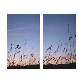 Sea-oats against a Blue Sky Canvas Print