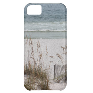 Sea Oats Along the Beach Side iPhone 5C Case