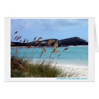 Sea Oats Card