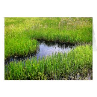 Sea of Grass Card
