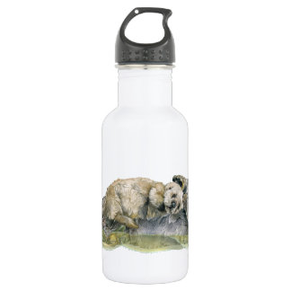 Sea Otter 532 Ml Water Bottle