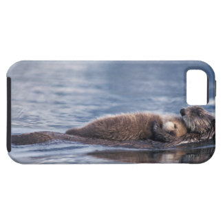 sea otter, Enhydra lutris lutris, mother with 2 Tough iPhone 5 Case