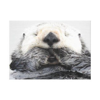 Sea Otter Sleeping Canvas Print