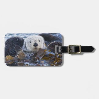 Sea otter wrapped in kelp luggage tag