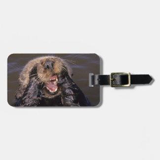 Sea Otters, Enhydra lutris 6 Bag Tag