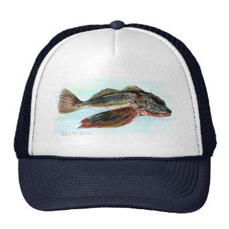 Sea Robin Cap