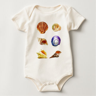 sea shell design bright and colourful baby bodysuit