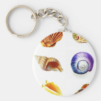 sea shell design bright and colourful key ring