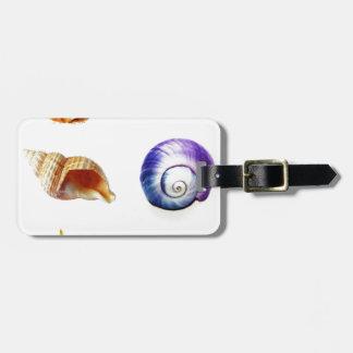sea shell design bright and colourful luggage tag