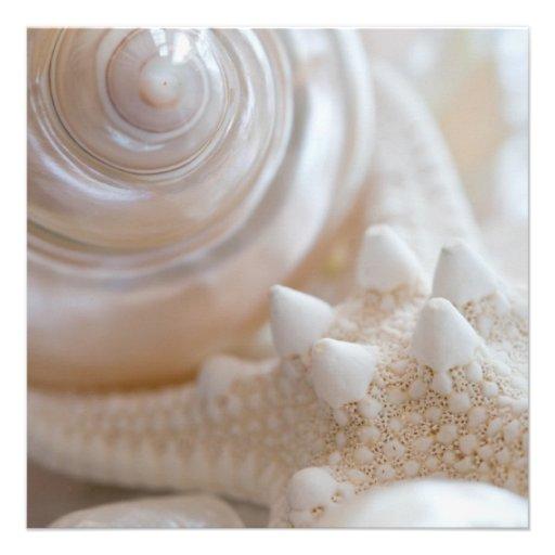 Sea Shell & Starfish Background - Beach Shells Invitation