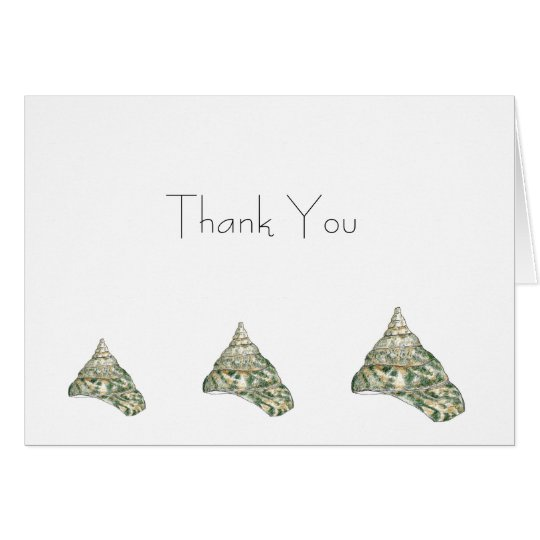 Sea Shell Thank You Card