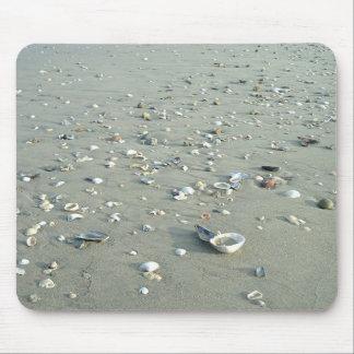 Sea Shells at Imperial Beach, California Mouse Pad