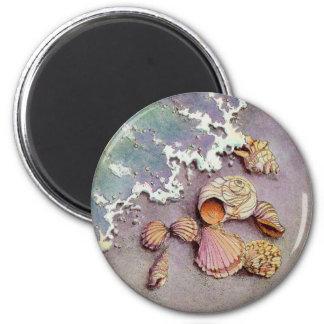 SEA SHELLS by SHARON SHARPE Magnet