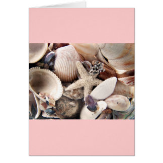 Sea Shells by the Shore Greeting Card