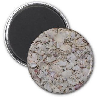 Sea shells Of sanibel Magnet