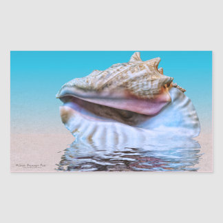Sea Shells Pink and Turquoise Watercolor Rectangular Sticker