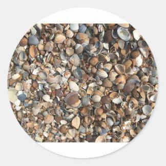 Sea shells round sticker