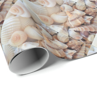 Sea Shells, Summer Exotic Tropical Photography Wrapping Paper