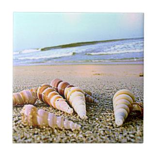 Sea Side Shells tile