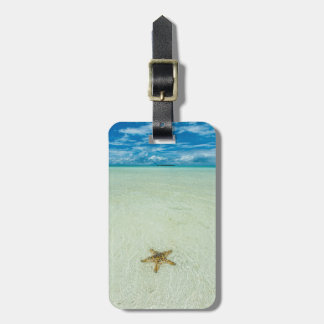 Sea star in shallow water, Palau Luggage Tag