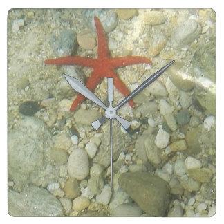 sea star square wall clock