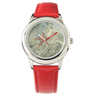 sea star watch