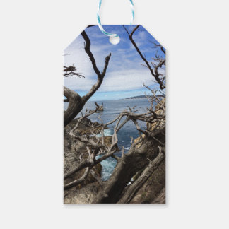 Sea the Beauty Gift Tags