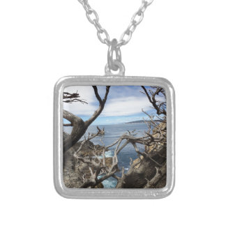 Sea the Beauty Silver Plated Necklace