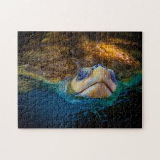 Sea Turtle 04 Digital Art - Photo Puzzle