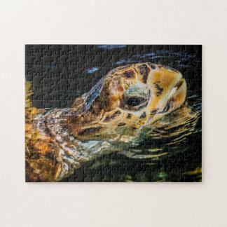 Sea Turtle 05 Digital Art - Photo Puzzle