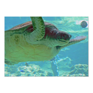 Sea Turtle 13 Cm X 18 Cm Invitation Card