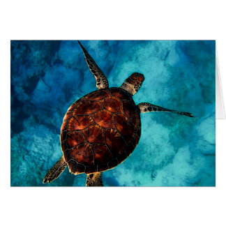 Sea Turtle Beauty Card