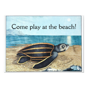 Sea turtle invitations announcements zazzle au sea turtle birthday bash invitation filmwisefo