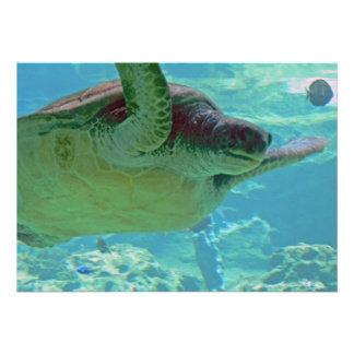 Sea Turtle Custom Invite